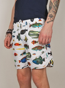 Dedicated Swim shorts tropical fish White