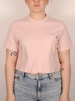 Dickies Porterdale crop tee w Light pink