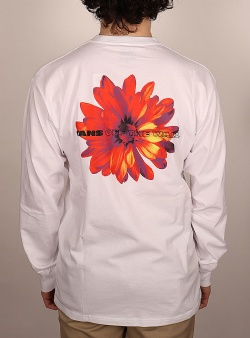 Vans Blooming ls tee White