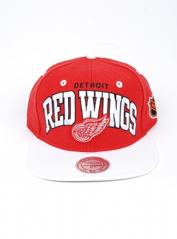 Mitchell and Ness Red Wings team arch 2 tone snapback Red